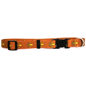 Fleur de Lis Gold Break Away Cat Collar