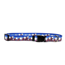 Shooting Stars Break Away Cat Collar