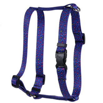 Neon Leopard Roman Style H Dog Harness