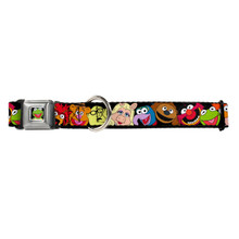 Muppets Kermit Buckle-Down Seat Belt Buckle Dog Collar