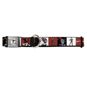 Harley Quinn Buckle-Down Seat Belt Buckle Dog Collar