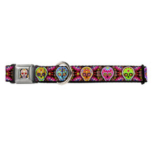 Sugar Skull Starburst Buckle-Down Seat Belt Buckle Dog Collar