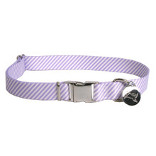 Southern Dawg Seersucker Purple Premium Dog Collar