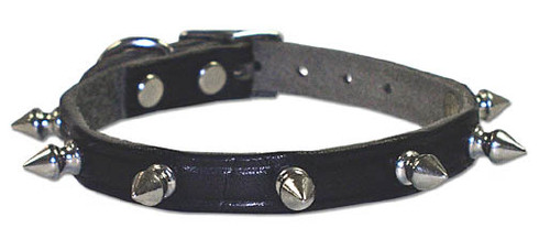 Latigo Leather Spiked Dog Collar
