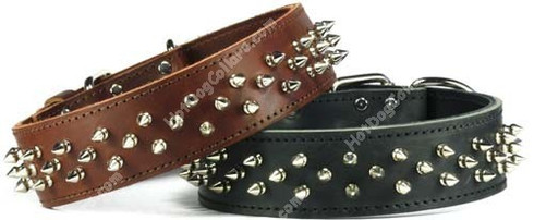 Brown or Black Spiked Leather Dog Collar