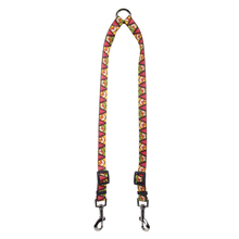 Fall Fox Coupler Dog Leash