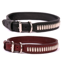 Oblong Stud Comet Dog COLLAR