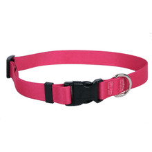 Magenta Simple Solid Dog Collar