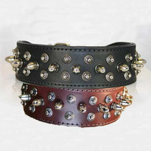 Celtic Bullet Studded Leather Collar