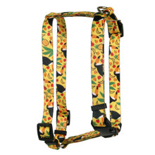 Fruity Tucan Roman Style H Dog Harness