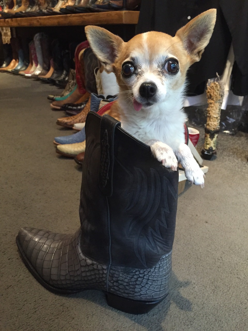 How is a Cowboy Boots Supposed to Fit?