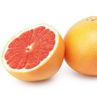 Grapefruit, Citrus X paradisi