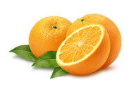 Orange, Citrus sinensis