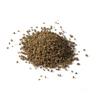 Celery Seed, Apium graveolens