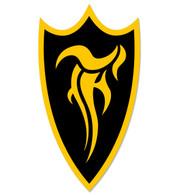 F-Shield Sticker (Yellow/Black)