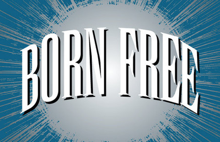 Born Free Witnessing booklets are excellent for sharing the Gospel with your friends and acquaintances.