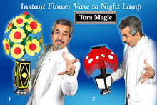 Instant Flower To Night Lamp w/ DVD - Tora