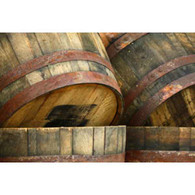 BARRELS OF FUN 40x60