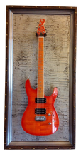 """G Frames """"Ancient Ruins Silver"""" Guitar or Bass Display Case"""