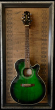 "G Frames ""Willie"" Guitar or Bass Display Case"