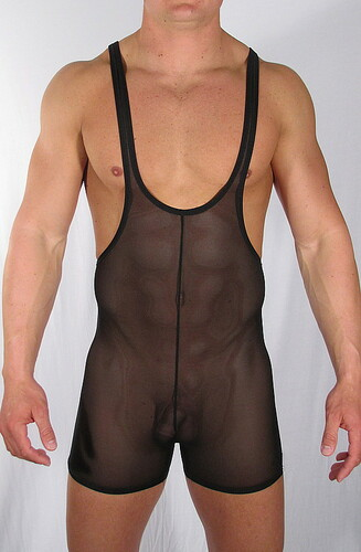 This sheer singlet is a great for lounging or wrestling privately. Definitely shows the buffed body.