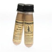 Cream Ale WLP080