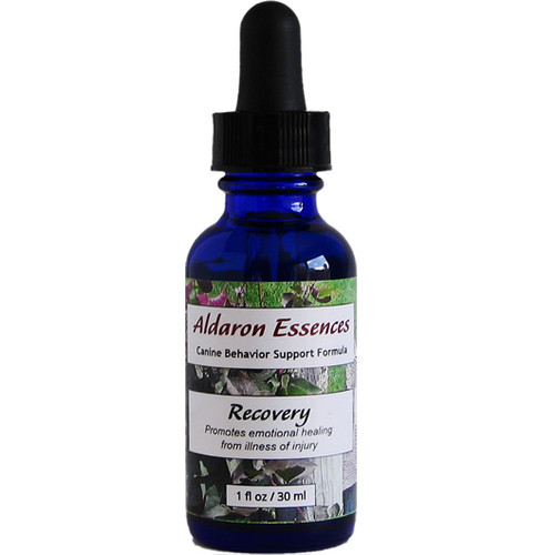 Aldaron Essences Recovery, flower remedy for dogs.  Promotes emotional healing during times of illness or injury.