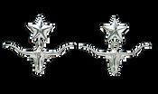 Bar V Earrings -Silver Longhorns - 311-062