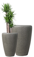"Set of 2 Fibreglass planters in Lime Stone finish  L:22""Dx32""H  S:18""Dx26""H  Plants are for illustration only"