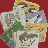 Sandhill and Whooping Crane blank cards