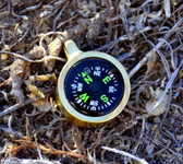 Brass Companion Compass