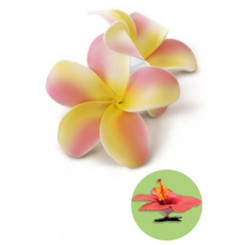 Hawaiian Hair Clip Foam Flowers Double Plumeria Yellow & Pink