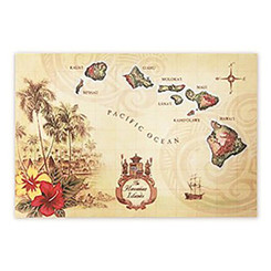 Woven Placemat Islands of Hawaii Tan Set Of 4