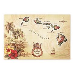Woven Placemat Islands of Hawaii Tan Set Of 4