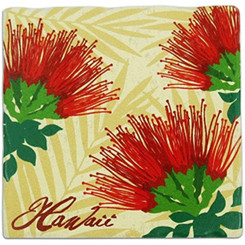 Hawaii Sandstone Coasters Set Of 4 Lehua