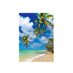 "4""x 6"" Postcards Hawaii Tropical Beach pack of 50"