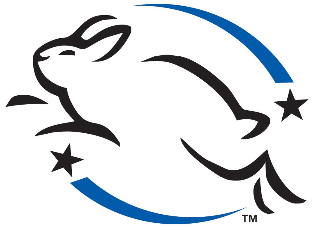 lepaing-bunny-logo1.png