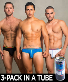 Andrew Christian Underwear Tagless Boy Briefs 3-Pack (90086-MULTI)
