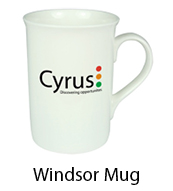 windsor-mugs-mugs-cardiff-swansea.jpg