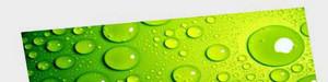 Printing on rip-resistant, waterproof paper