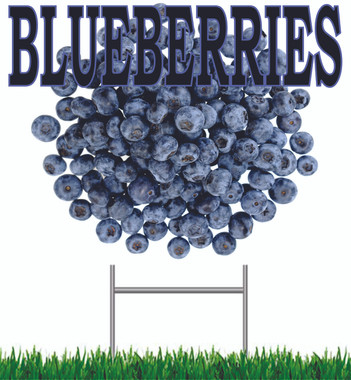 Blueberries Yard Sign You Just Have to Have this Sign!