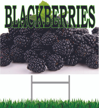 Blackberries Yard Sign.