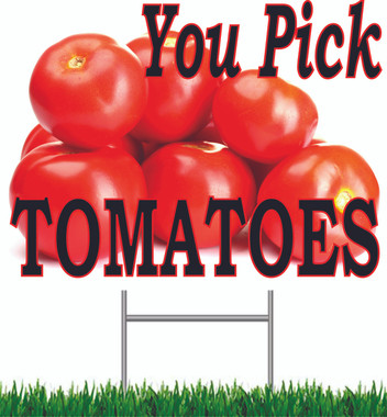 You Pick Tomatoes 18in x 24in Road Sign.
