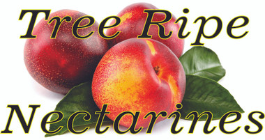 Tree Ripe Nectarines Outstanding Color that Get Noticed.