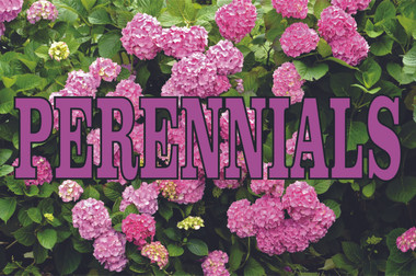 Perennials banner in full color will help bring in customers.
