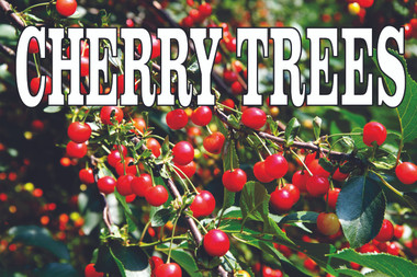 Shop here for Cherry Tree & Fruit Tree Banners & Signs.