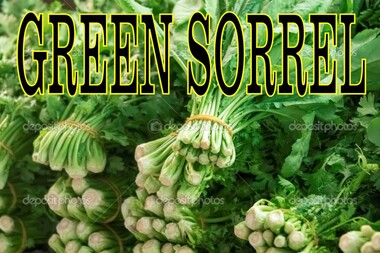 Green Sorrel Banner.
