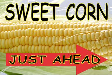 Sweet Corn Just Ahead Right VB 972 R