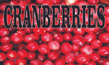 Fruit Banner - Cranberries