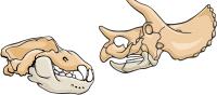 category-paleontology-02.png